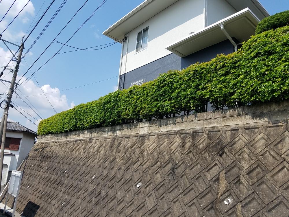植木に囲まれていて、毎年掃除が大変でしたが、頑丈なブロックフェンスにして掃除も楽になりました!